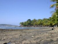 Beautiful Beaches in Panama Punta Burica