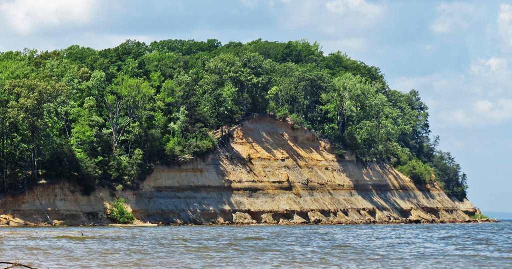 Calvert Cliffs State Park Maryland