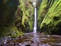 Oneonta Gorge Best Waterfall in the US