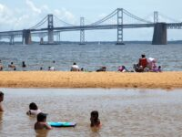Sandy Point State Park Best Beaches in Maryland