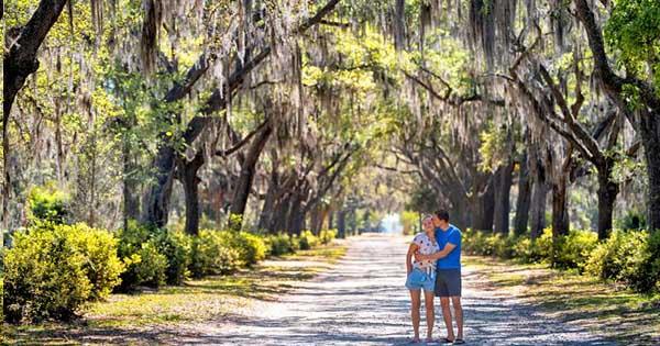 Honeymoon Destinations In Savannah